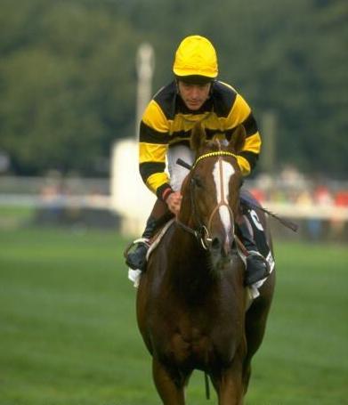 Great Irish Jockeys